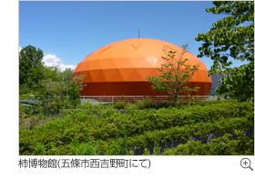 柿博物館(五條市西吉野町にて)